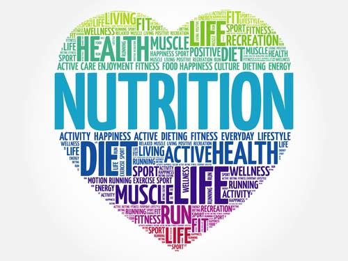 Outils nutrition pour la musculation