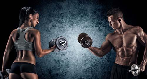 Outils et tests pour bien débuter en muscu
